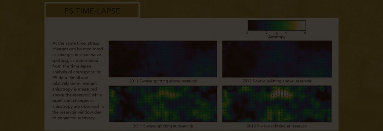 SEISMIC DATA PROCESSING IS OUR BUSINESS