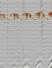 fig.2 - A common receiver gather from a simultaneous source survey.  The interference appears incoherent in this domain.
