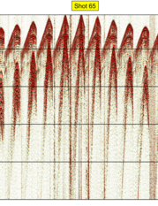 fig. 2b - Shot 65 uncontaminated by harmonic distortion.